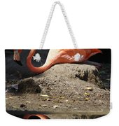 Reflections Of A Flamingo Weekender Tote Bag