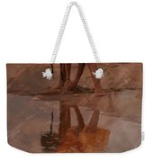 Reflections Of India Weekender Tote Bag