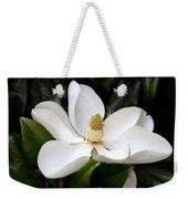 Regal Southern Magnolia Blossom Weekender Tote Bag