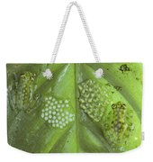 Reticulated Glass Frogs And Eggs Weekender Tote Bag