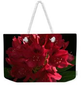 Rhododendron At Sunset 1 Weekender Tote Bag