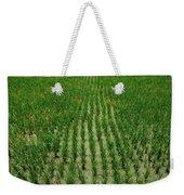 Rice Field Weekender Tote Bag