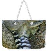 Ring-tailed Lemurs Madagascar Weekender Tote Bag