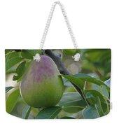Ripening Pear In Tree Weekender Tote Bag