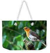 Robin 1 Weekender Tote Bag