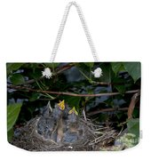 Robin Nestlings Weekender Tote Bag by Ted Kinsman