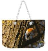 Robin On Tree Weekender Tote Bag