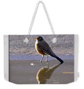 Robin Reflection Weekender Tote Bag