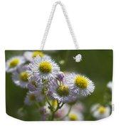 Robin's Plantain - Alabama Wildflowers Weekender Tote Bag