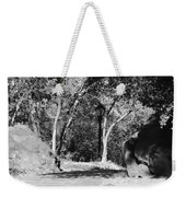 Rocks And Trees In Black And White Weekender Tote Bag