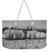 Rocky Mountain High Country Autumn Fall Foliage Scenic View Bw Weekender Tote Bag
