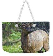 Roe Deer In Forest, Canadian Weekender Tote Bag