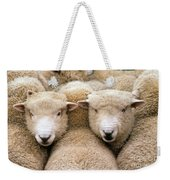 Romney Sheep Weekender Tote Bag