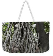 Roots From A Large Tree Inside Jallianwala Bagh Weekender Tote Bag