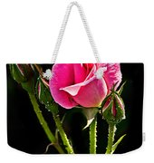 Rose And Buds Weekender Tote Bag