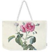 Rose Dutch Hundred Leaved Rose Weekender Tote Bag
