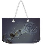 Rotifer Stephanoceras Weekender Tote Bag