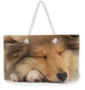 Rough Collie Pup Weekender Tote Bag