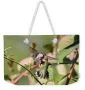 Ruby-throated Hummingbird - An Altercation Weekender Tote Bag