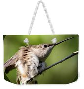 Ruby-throated Hummingbird  - The Stretch Weekender Tote Bag