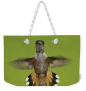 Rufous Hummingbird Selasphorus Rufus Weekender Tote Bag
