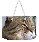 Runcius- My King Kitty Enjoying The Sunshine Weekender Tote Bag