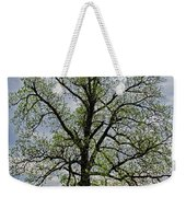 Rural Trees I Weekender Tote Bag