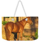 Rusty Standing Proud Weekender Tote Bag