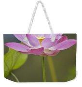 Sacred Lotus Nelumbo Nucifera Flower Weekender Tote Bag