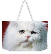 Sad Persian Cat Weekender Tote Bag