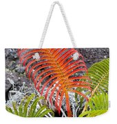 Sadleria Fern Hawaii Weekender Tote Bag