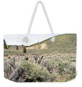 Sage And Pasture Weekender Tote Bag