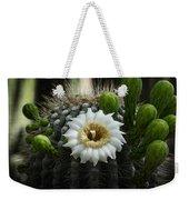 Saguaro Cactus Blooms  Weekender Tote Bag