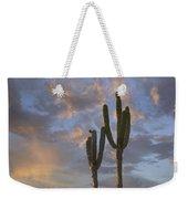Saguaro Carnegiea Gigantea Cacti, Cabo Weekender Tote Bag