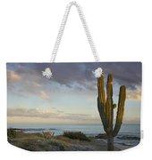 Saguaro Carnegiea Gigantea Cactus Weekender Tote Bag