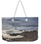 Salton Sea Birds Weekender Tote Bag