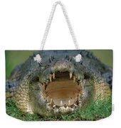 Saltwater Crocodile Crocodylus Porosus Weekender Tote Bag