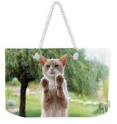 Salute Cat Weekender Tote Bag