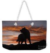 Samoyed At Sunset Weekender Tote Bag