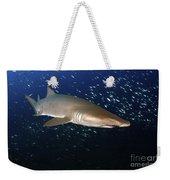 Sand Tiger Shark Off The Coast Of North Weekender Tote Bag