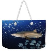 Sand Tiger Shark Swimming In Blue Water Weekender Tote Bag