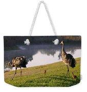 Sandhill Crane Family Fun Weekender Tote Bag