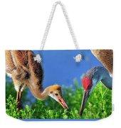 Sandhill Cranes Having Breakfast Weekender Tote Bag