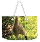 Sandhill Toddler Weekender Tote Bag