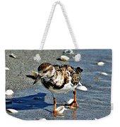 Sandpiper IIi Weekender Tote Bag