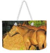 Sandy Eating Hay Weekender Tote Bag
