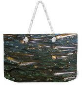 Sardines Anyone Weekender Tote Bag