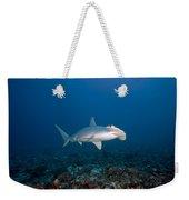 Scalloped Hammerhead Shark Weekender Tote Bag
