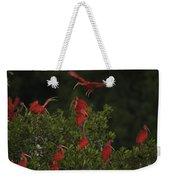Scarlet Ibises Roost In A Red Mangrove Weekender Tote Bag