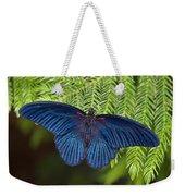 Scarlet Swallowtail Weekender Tote Bag by Joann Vitali